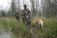 В период с 1 августа 2015 года до 1 августа 2016 года охотникам можно добыть 7 барсуков, 5 медведей, 4 пятнистых оленя, 174 лося и одну рысь.