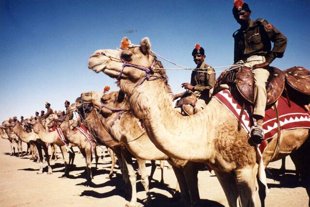 Арабские и берберские племена ещё за 1 000 лет до нашей эры использовали верблюдов не только для переброски пехоты и грузов, но и в бою. Обычно на верблюде находилось два воина: погонщик с длинным копьём и лучник. Для ведения боевых действий со временем была выведена быстрая малогабаритная порода верблюдов, на которых размещался один всадник. Во времена крестовых походов смешанные с конницей верблюды позволяли арабам выдерживать атаки европейской тяжёлой кавалерии.