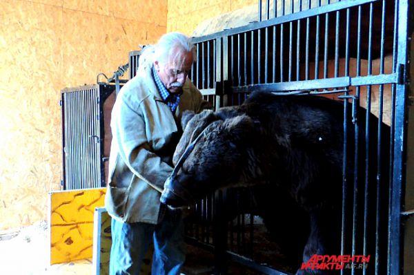 Медведь Егор готовится к прогулке.
