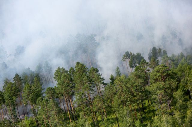 Дым от лесных пожаров виден на сотни километров.