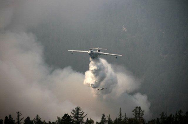 Чаще всего причиной лесных пожаров становится человек.