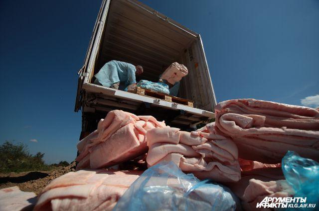 Санкционное мясо уничтожают на скотомогильнике в районе посёлка Нагорное.