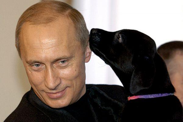 1 марта 2004 года. Владимир Путин с щенком, рожденным его любимой собакой – лабрадором Кони, которого он подарил шестилетней девочке Кате из Смоленска.