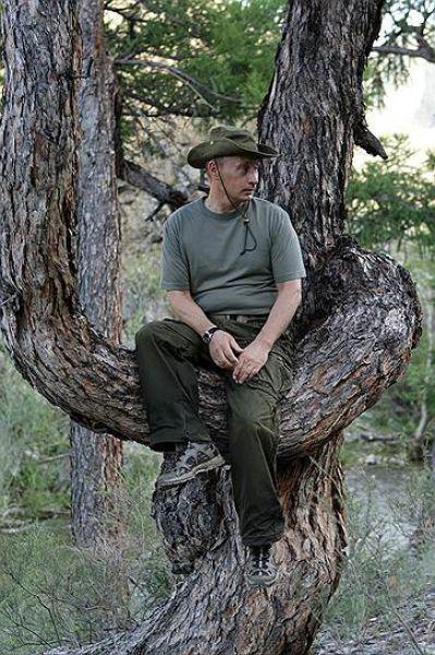 3 августа 2009 года. Владимир Путин на отдыхе в Республике Тыва.