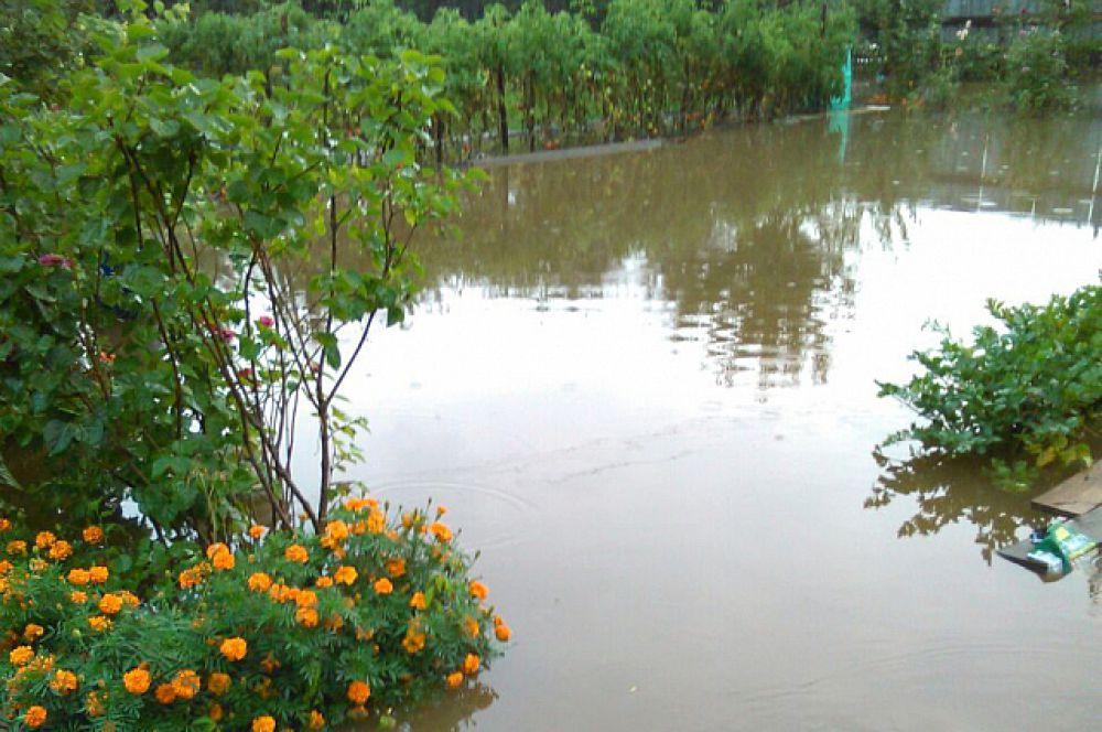 Раньше это были овощные грядки, теперь - небольшое озеро.