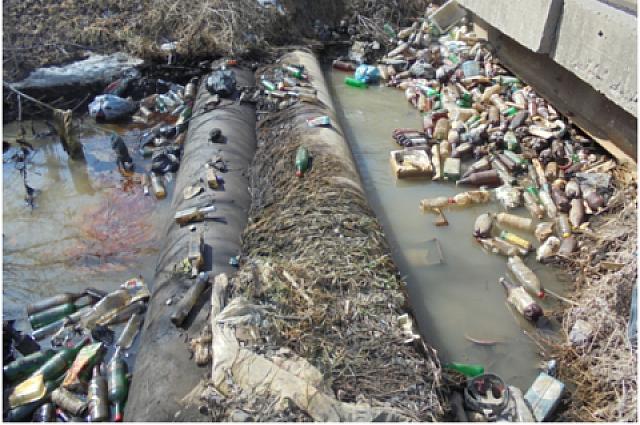 Пластиковый мусор - самый вредный.