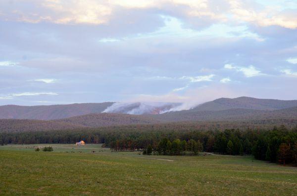В этом году лесные пожары бушевали и на Ольхоне.
