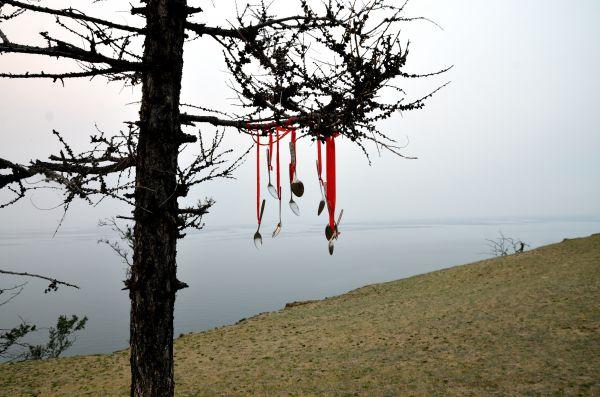 Ложки на дереве.