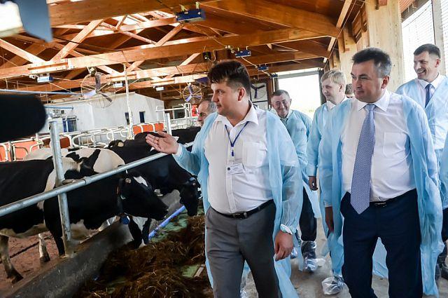 В ТОР Михайловский уже есть автоматизированная ферма.