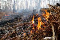 Пожаров в этом году меньше, чем в прошлом, но никому от этого не легче.