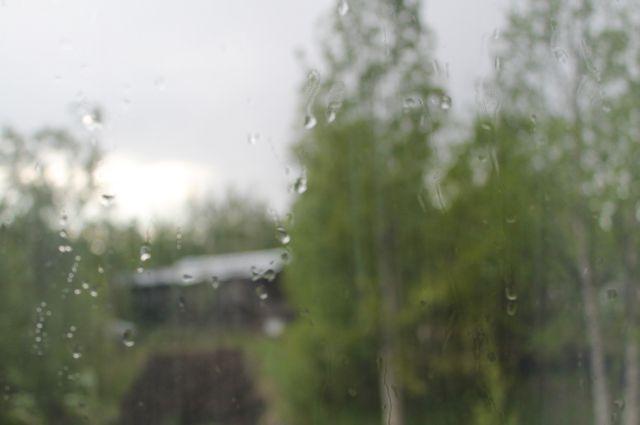 В понедельник в Приморье будет дождливо.
