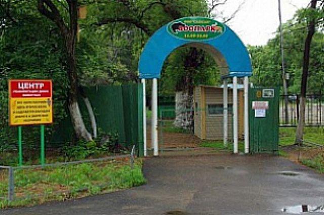 Зоопарк в Уссурийске.