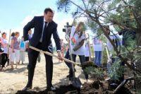 Эдхам Акбулатов сажает деревья.