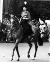 С детства королева очень любит животных. Она является заводчицей множества чистокровных скакунов, часто приходит посмотреть на соревнования по конному спорту, а также на скачки, в которых участвуют ее кони.