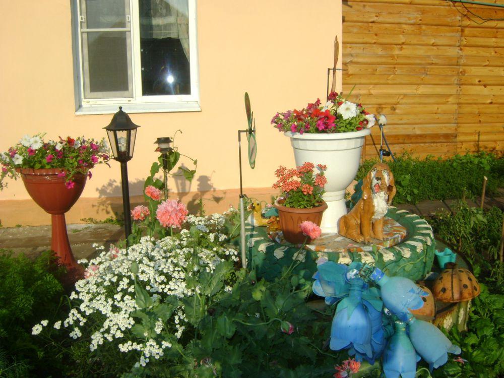 Н. Глодева - 2 место по версии базы отдыха «Белые камни» в конкурсе «А у нас во дворе».