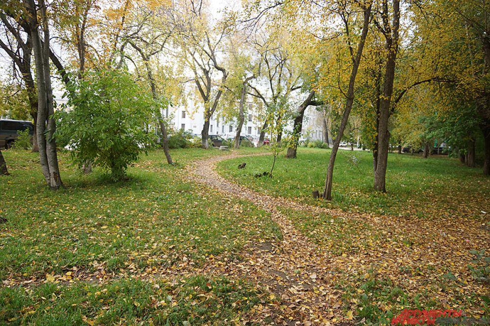 Тропинки украшены листвой.