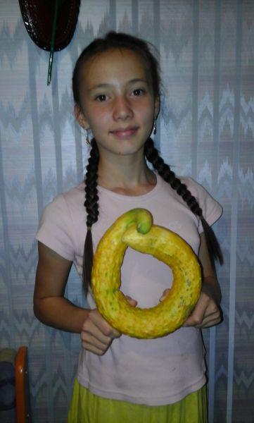 Нина Александрова: «Этот огурец, напоминающий змею, вырос на приусадебном участке в г. Верещагино. Его вес - 705 гр., длина - 73 см»