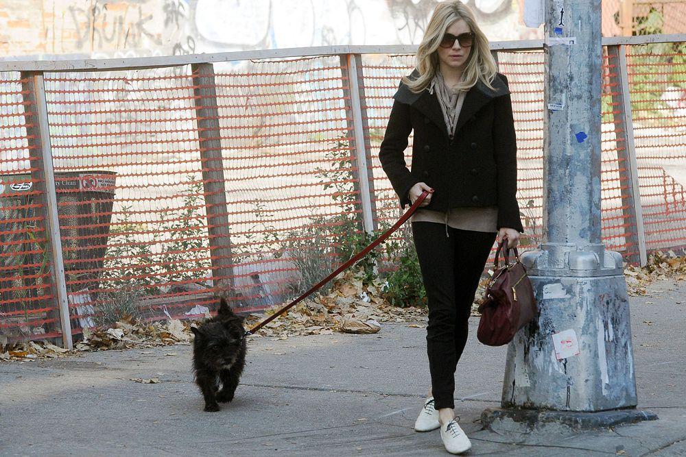 Пятерку лидеров списка самых стильных звезд замыкает актриса Сиенна Миллер.