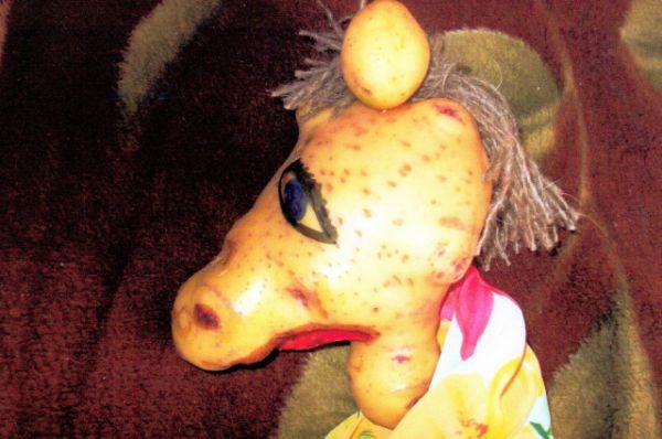 «Когда племянник увидел такую картошку, то сразу сказал, что она похожа на голову лошади, только не хватает гривы. Мы решили сделать гриву, нарисовали глаза, и стало наше чудо походить на настоящую лошадиную голову»