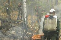 Лес горит - пожарных не хватает.