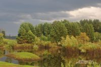 Омская область может стать туристическим местом.