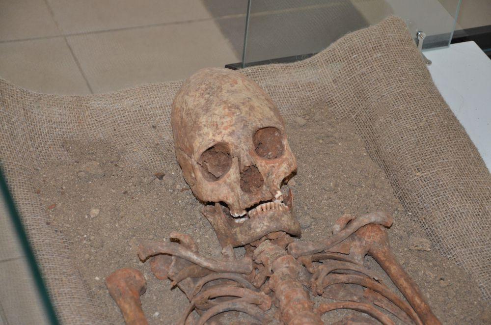 """Находка """"яйцеголовой"""" женщины наделала немало шума летом этого года: была версия, что это не останки древнего человека, а кости пришельца из космоса."""