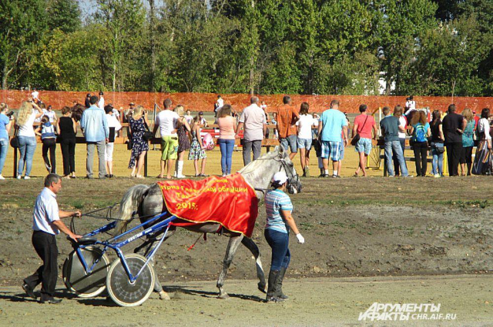 Участвовали наездники на трехгодовалых жеребцах и кобылах. Победителями стали Александр Кобзев и его лошадь по кличке Орбита. Дистанцию в 2400 м эта пара прошла за 3 мин 12,5 сек.