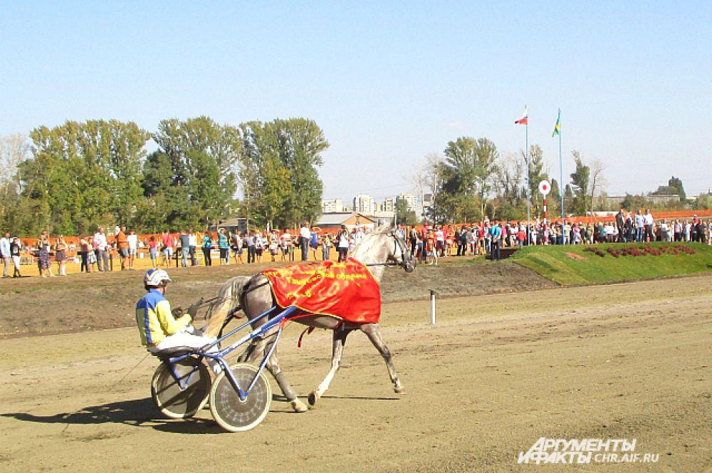 Победный кубок, а также денежное вознаграждение в 37,5 тыс.руб. достались Раилю Габдрашитову, выступившему в 4 заезде. Его семилетний жеребец Алтай оказался проворнее всех на дистанции 2400 м.