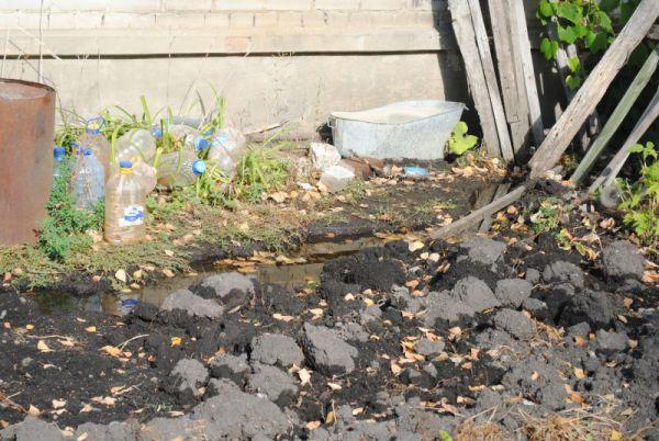 В подвал дома свободно затекают потоки от дырявого водопровода.