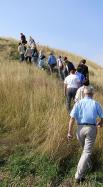 Восхождение на уникальный холм в степном краю представителей Волгодонского отделения  МедиаСоюза осенью 2008 года.