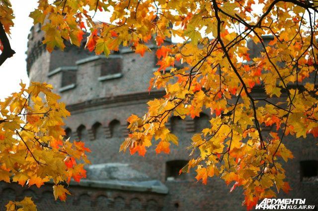 Осень в Калининграде.