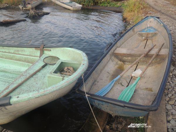 Зарыбление проводится, чтобы пополнить запасы водных ресурсов и увеличить вылов рыбы.
