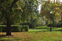 Омские синоптики обещают ещё одно потепление в октябре.