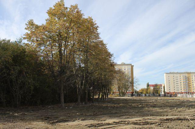 На месте общежития КВАТУ теперь пустырь.