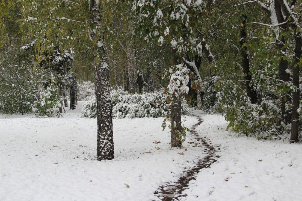 Тропинка на снегу.