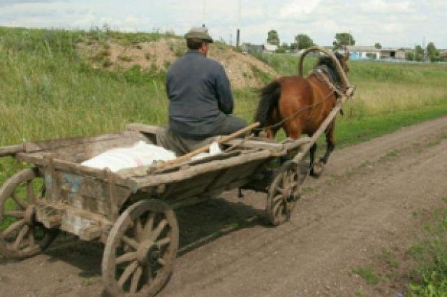 повозка снятся к с чему лошадьми