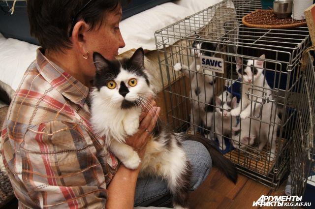 Депутаты научат приморцев проявлять гуманность и ответственность по отношению к домашнему животному.