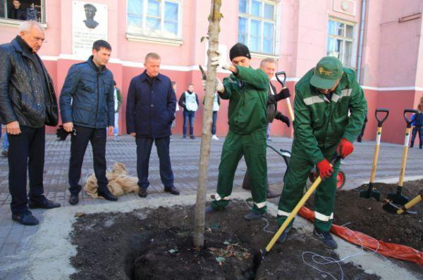 В Дне Древонасаждений принял участие глава администрации Ростова Сергей Горбань.