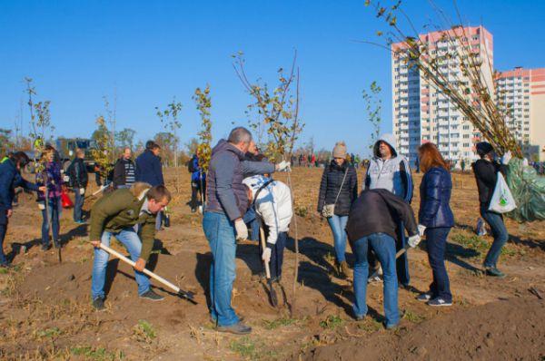 Масштабный трудовой десант – осенний День древонасаждения, состоялся в субботу, 17 октября, в донской столице.