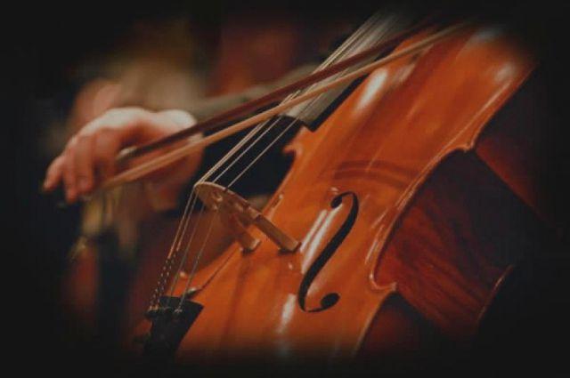 Гости мастер-класса решили собраться на следующий мастер-класс по игре на виолончели в феврале.