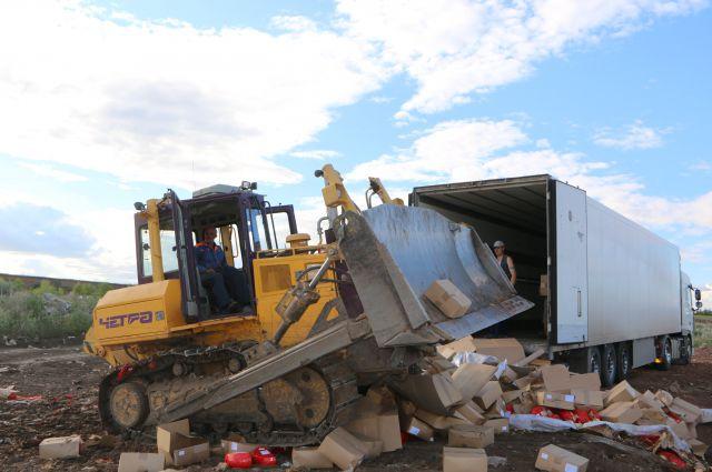 Уничтожение латвийского сыра в августе 2015 года.