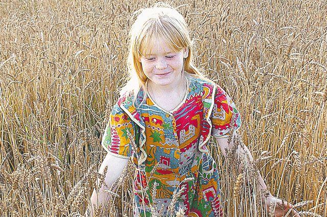 Один раз засеял поле - и 3 года собирай урожай.