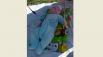 Александр, 6 месяцев