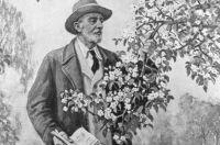 Репродукция портрета русского биолога Ивана Мичурина работы неизвестного художника.
