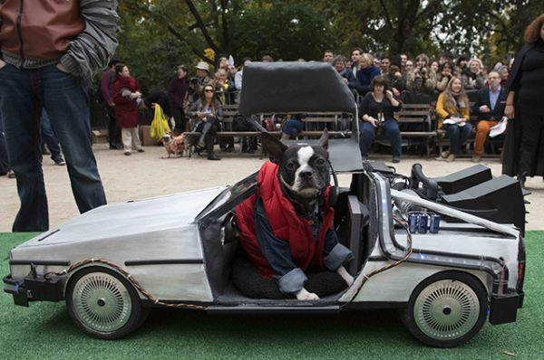 Марти Макфлай на своем DeLorean.