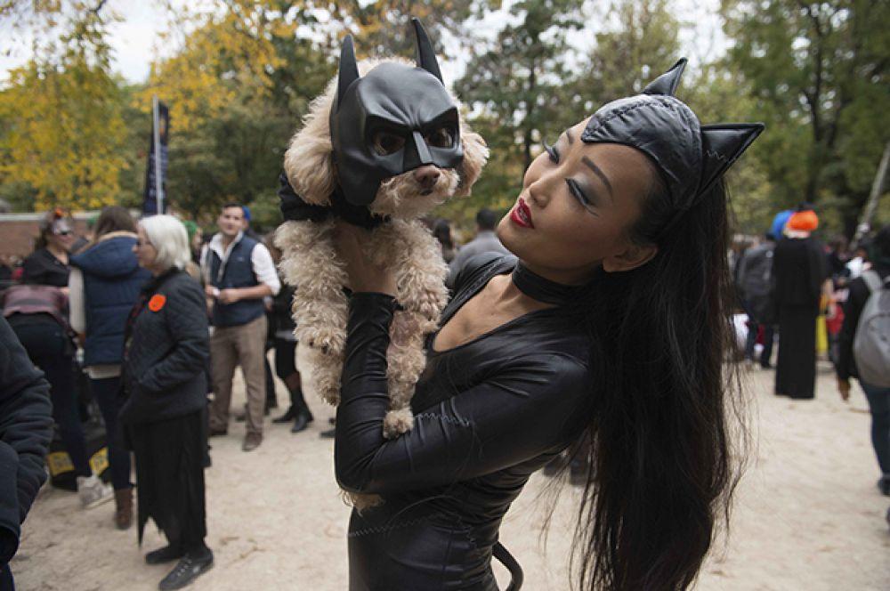 Женщина-кошка и собака-Бэтмен.