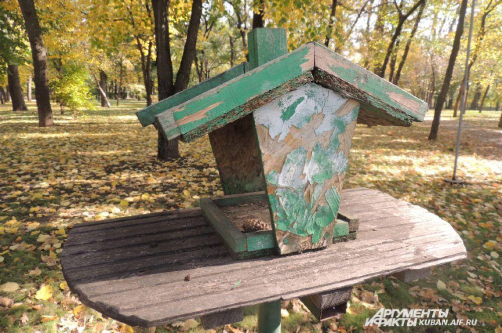 Кормушки для птиц в городских парках пока пустуют.