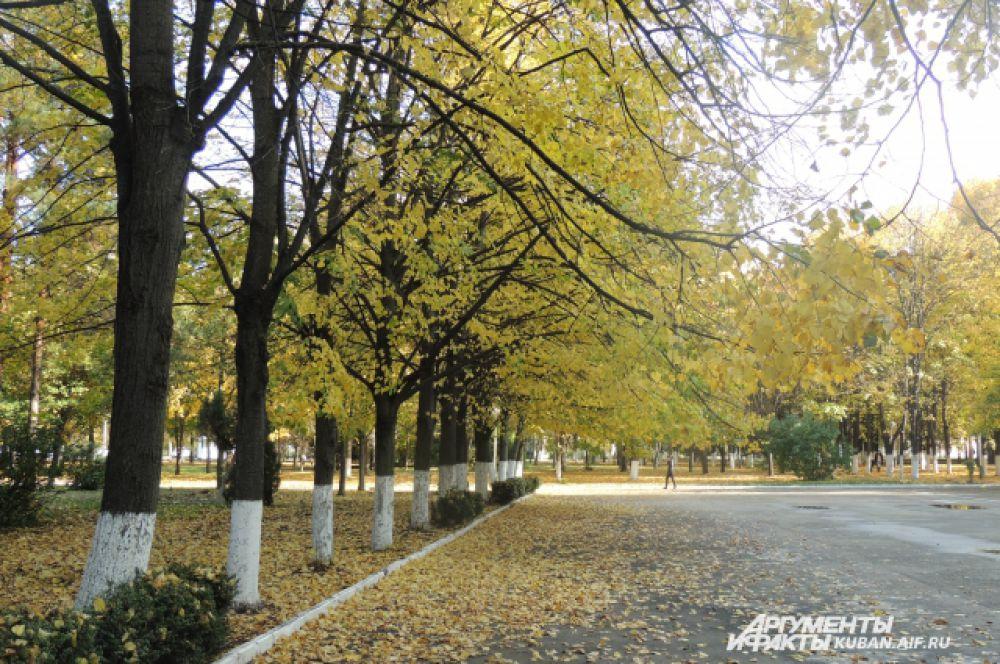 Аллеи, усыпанные осенними листьями, завораживают своей красотой.