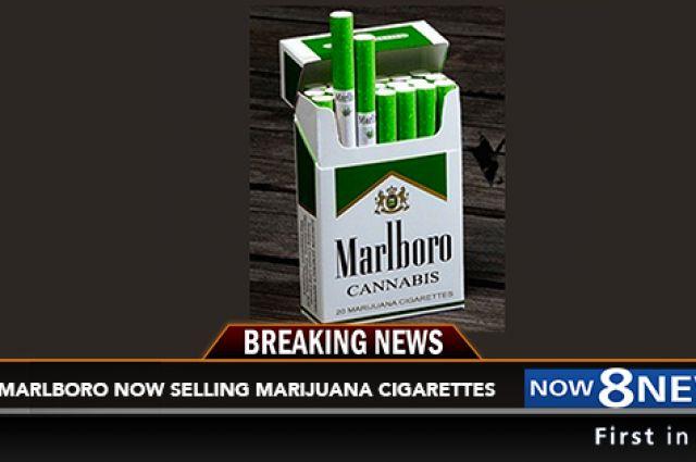 легальные сигареты купить