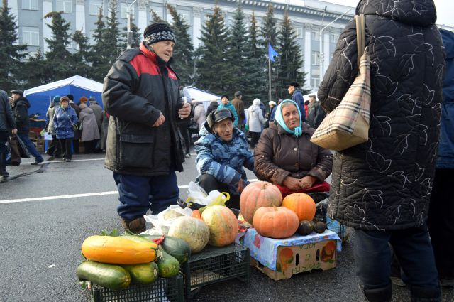 Садоводы и огородники вносят весомый вклад в продовольственную безопасность Кузбасса.